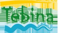 Tebina Retina Logo